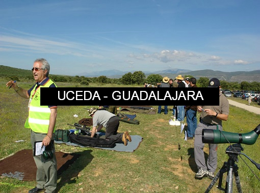 Clasificaciones F-Class Campo de Tiro Uceda
